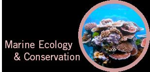 marine-ecology.png